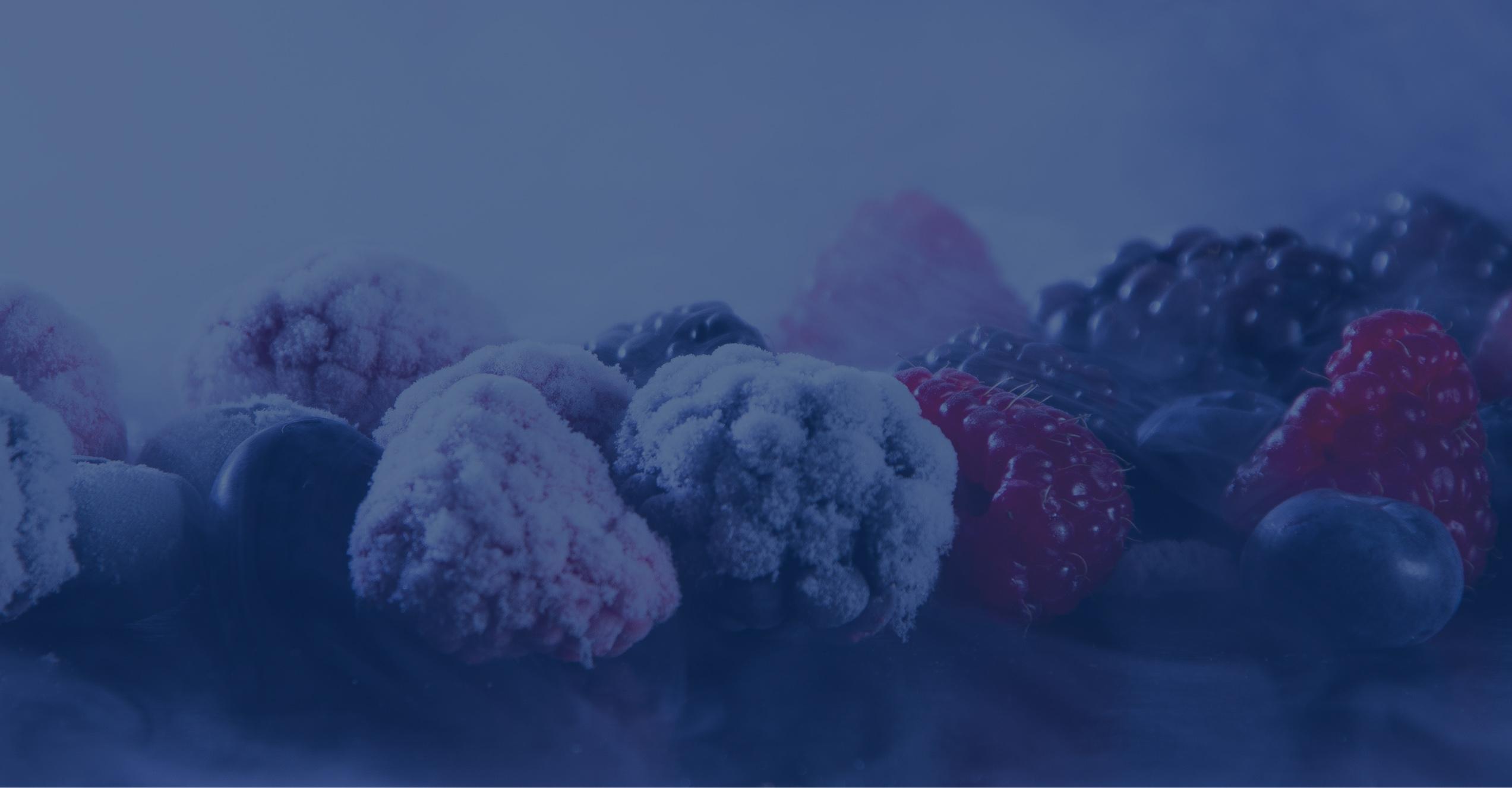 Услуги шоковой заморозки